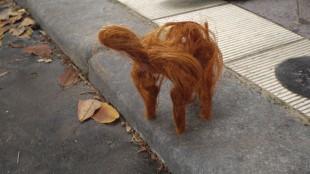 haircut2-2